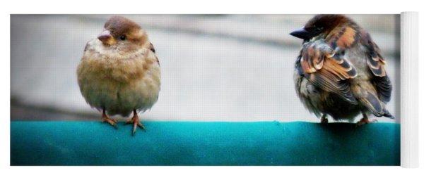 House Sparrows Yoga Mat
