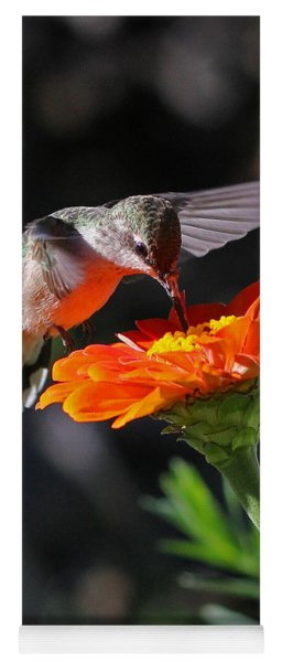 Hummingbird And Zinnia Yoga Mat