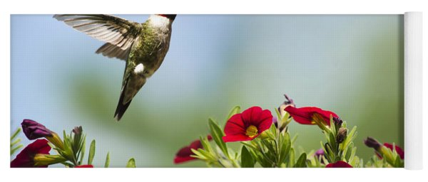 Hummingbird Frolic With Flowers Yoga Mat