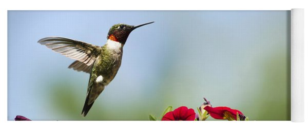 Hummingbird Frolic With Flowers Yoga Mat