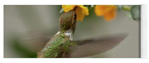 Hummingbird Sips Nectar Yoga Mat
