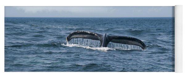 Humpback Whale Fin Yoga Mat
