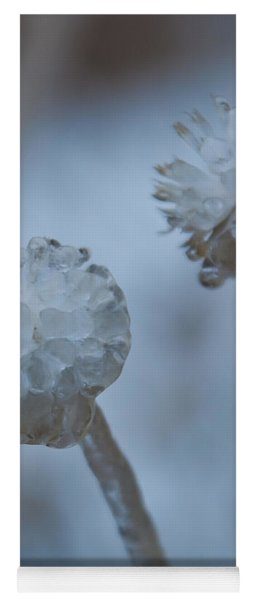Ice-covered Winter Flowers With Blue Background Yoga Mat