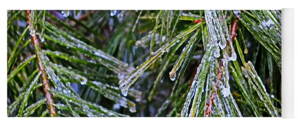 Ice On Pine Needles  Yoga Mat