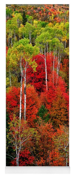 Idaho Autumn Yoga Mat