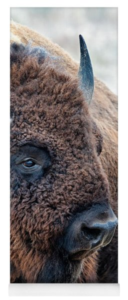 Olena Art Bison The Mighty Beast Bison Das Machtige Tier North American Wildlife  Yoga Mat