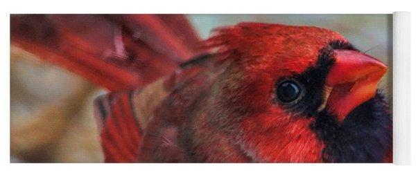 Inquisitive Cardinal Yoga Mat