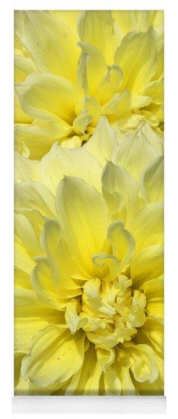 Intense Yellow Dahlias Yoga Mat