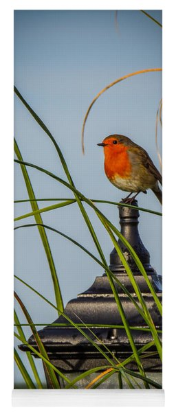 Irish Robin Perched On Garden Lamp Yoga Mat