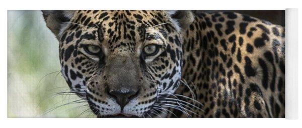 Jaguar Portrait Yoga Mat