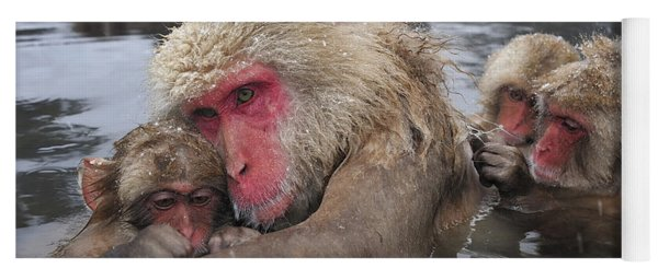 Japanese Macaque Grooming Mother Yoga Mat