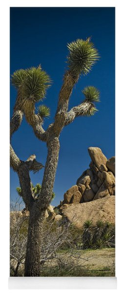 California Joshua Trees In Joshua Tree National Park By The Mojave Desert Yoga Mat
