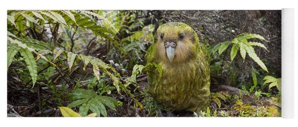 Kakapo Male In Forest Codfish Island Yoga Mat