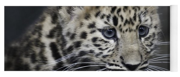 Kanika - Amur Leopard Portrait Yoga Mat