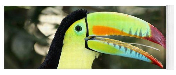 Keel Billed Toucan Yoga Mat
