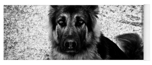 King Shepherd Dog - Monochrome  Yoga Mat