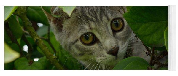 Kitten In The Bushes Yoga Mat