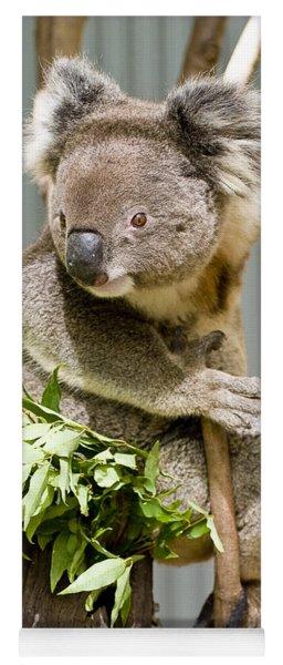 Koala Yoga Mat