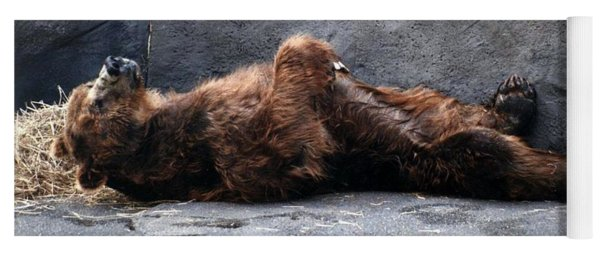 Kodiak Brown Bear Taking A Nap Yoga Mat
