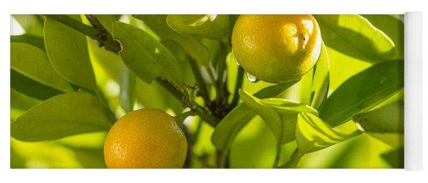Kumquats Yoga Mat
