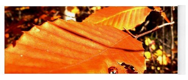 Ladybug At Fall Yoga Mat