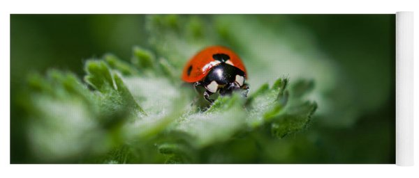 Ladybug On The Move Yoga Mat