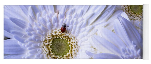 Ladybug On White Daisy Yoga Mat
