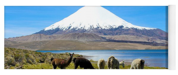 Lake Chungara Chilean Andes Yoga Mat