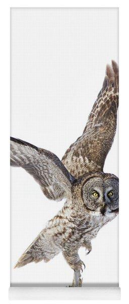 Lapland Owl On White Yoga Mat