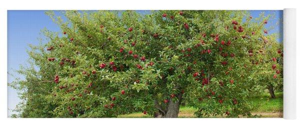 Large Apple Tree Yoga Mat