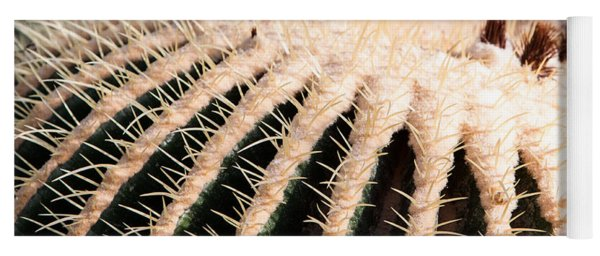 Yoga Mat featuring the photograph Large Cactus Ball by John Wadleigh