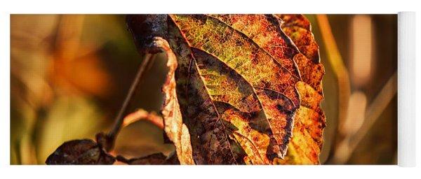 Leaving Autumn Yoga Mat