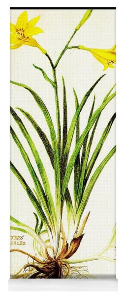Lemon Daylily Botanical Yoga Mat