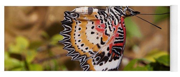 Leopard Lacewing Butterfly Dthu619 Yoga Mat