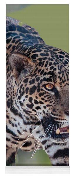 Jaguar Walking Portrait Yoga Mat
