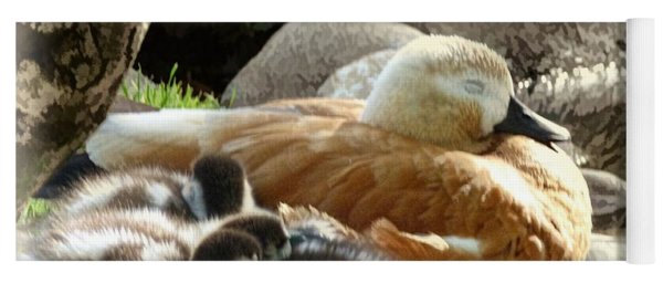 Let Sleeping Ducks Lie Yoga Mat