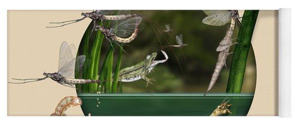 Life Cycle Of Mayfly Ephemera Danica - Mouche De Mai - Zyklus Eintagsfliege - Stock Illustration - Stock Image Yoga Mat