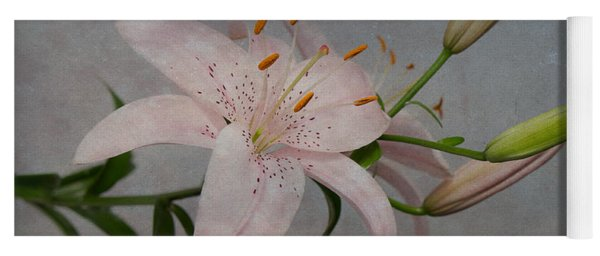 Yoga Mat featuring the photograph Pink Lily With Texture by Patti Deters