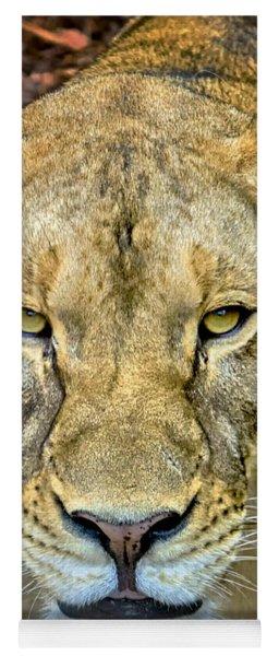 Lion Closeup Yoga Mat