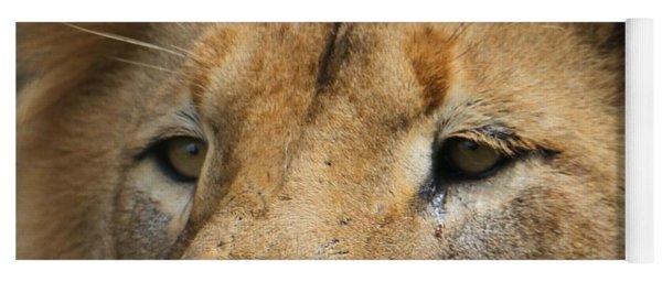 Lion Eyes Yoga Mat