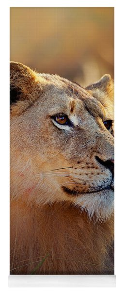 Lioness Portrait Lying In Grass Yoga Mat