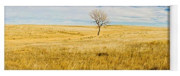 Lone Hackberry Tree In Autumn Plains Yoga Mat