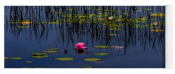 Lone Pink Water Lily  Yoga Mat
