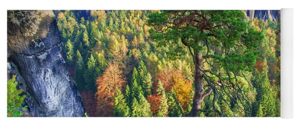 Lonely Tree In The Elbe Sandstone Mountains Yoga Mat