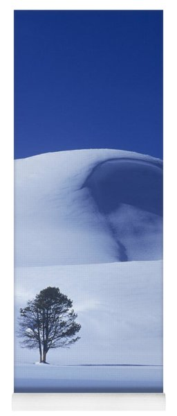 Lonely Tree In Winter Yellowstone National Park Yoga Mat