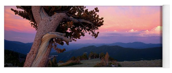 Lonesome Pine Yoga Mat