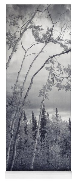 Lonesome Woods Yoga Mat