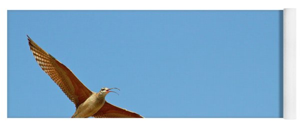 Long-billed Curlew In Flight Yoga Mat