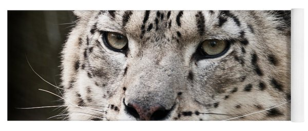 Look Into My Leopard Eyes Yoga Mat