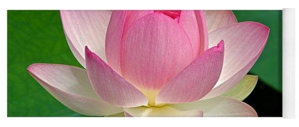 Lotus 7152010 Yoga Mat